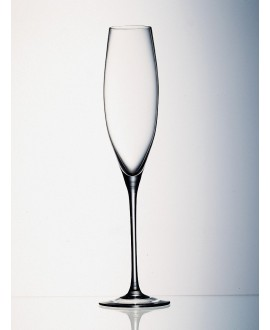 Enoteca Champagne flûte ZWIESEL 1872